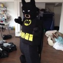 Lego Batman Mascot Costume