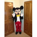 Hire Rent Mickey Mouse mascot costume